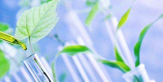 calyxt-partners kemx global refine high oleic soybean oil