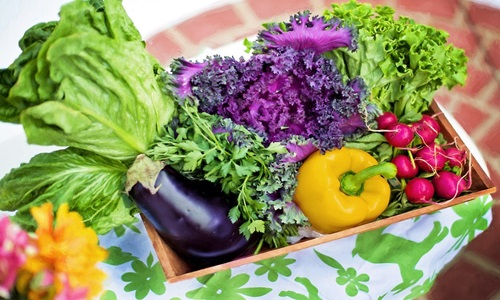 Indian food products company iD Fresh plans to go all-organic