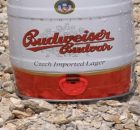 Budweiser launches new beer to celebrate the first lunar landing